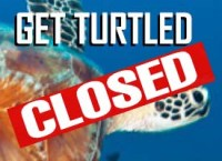 closed-get-turtled-tile