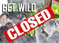 closed-get-wild-tile2-copy