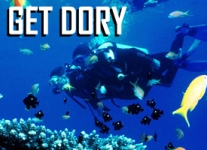 get-dory-tile copy